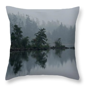 Morning Fog Over Cranberry Lake Throw Pillow