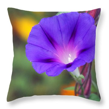 Throw Pillow featuring the photograph Morning Glory by Vadim Levin