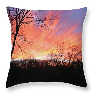 Throw Pillow featuring the photograph Morning Has Broken by Kristin Elmquist