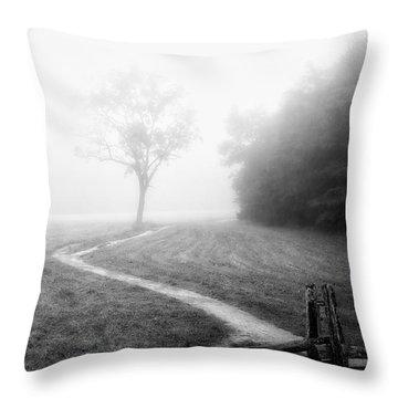 Morning Path Throw Pillow