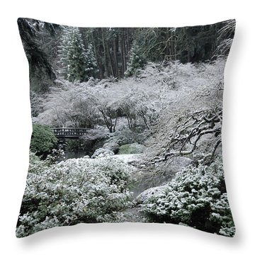 Morning Snow In The Garden Throw Pillow by Don Schwartz