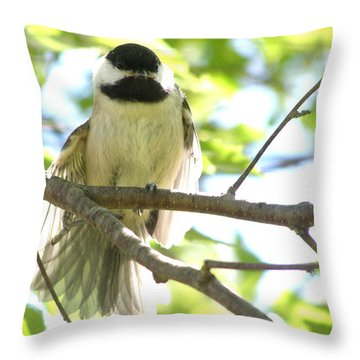 Throw Pillow featuring the photograph Morning Stretch by Angie Rea