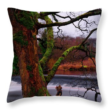 Throw Pillow featuring the photograph Mossy Tree Leaning Over The Smooth River Wharfe by Dennis Dame