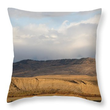 Throw Pillow featuring the photograph Mountain Meadow And Hay Bales In Grand County by Carol M Highsmith