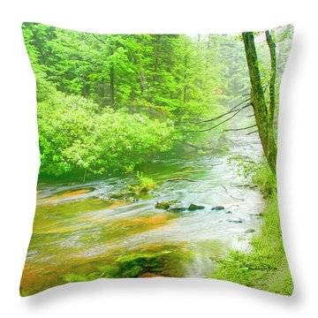 Mountain Stream, Pocono Mountains, Pennsylvania Throw Pillow