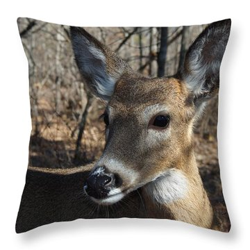 Mr. Cool Throw Pillow by Bill Stephens