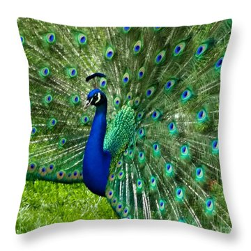 Throw Pillow featuring the photograph Mr. Peacock by Mindy Bench