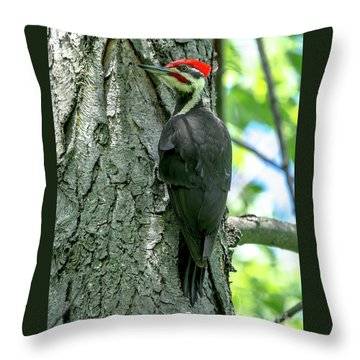 Mr. Pileated Woodpecker Throw Pillow