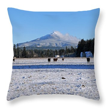 Mt. Pilchuck Throw Pillow by Rebecca Parker