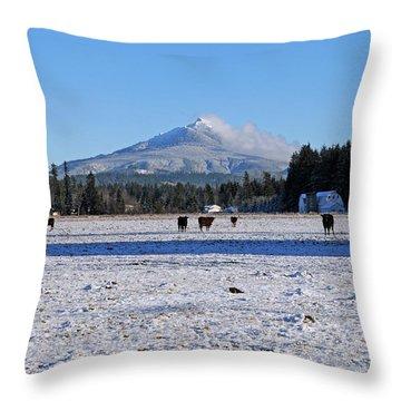Mt. Pilchuck Throw Pillow