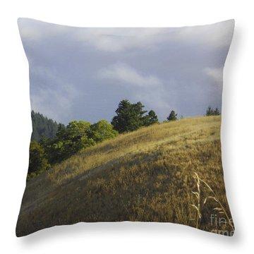 Mt. Tamalpais Study #1 Throw Pillow