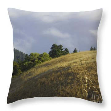 Mt. Tamalpais Study #1 Throw Pillow