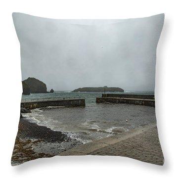 Mullion Cove Throw Pillow