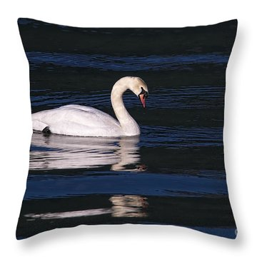 Throw Pillow featuring the photograph Mute Swan  by Sharon Talson
