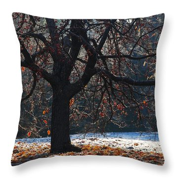 My Favorite Tree Throw Pillow