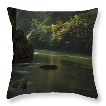 Mystical Canyon Signed Throw Pillow