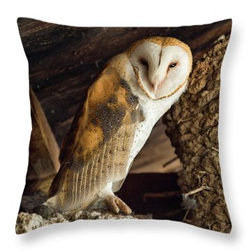Napster Throw Pillow
