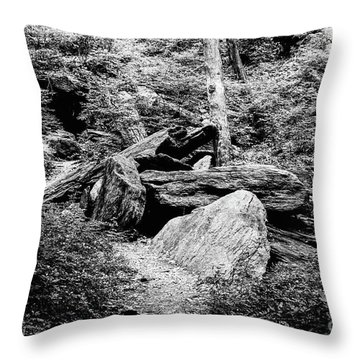 Native American Caves  Throw Pillow