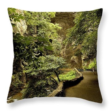Throw Pillow featuring the photograph Natural Bridge  by Raymond Earley