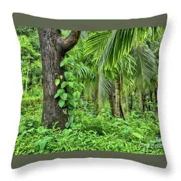 Throw Pillow featuring the photograph Nature 7 by Charuhas Images