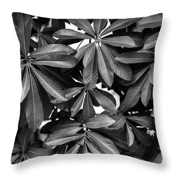 Nature Background, Green Leaves, Flowers In Natural Light And Sh Throw Pillow