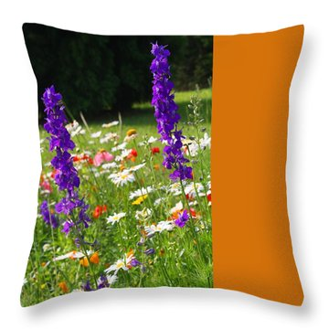Ncdot Planting Throw Pillow by Kathryn Meyer