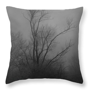 Nebelbild 13 - Fog Image 13 Throw Pillow by Mimulux patricia no No