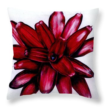 Neoregelia 'christmas Cheer' Throw Pillow