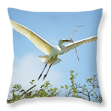 Nest Building Throw Pillow by Kenneth Albin