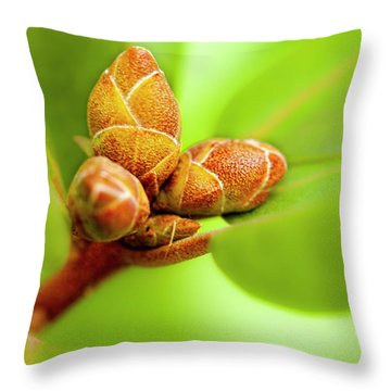 New Birth Throw Pillow