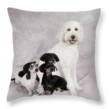 Fur Friends Throw Pillow