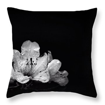 Nocturnal Blossom Throw Pillow