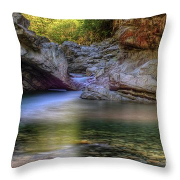 Norrish Pool Throw Pillow