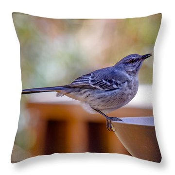 Throw Pillow featuring the photograph Northern Mockingbird by Robert L Jackson