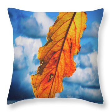 October Leaf B Fine Art Throw Pillow