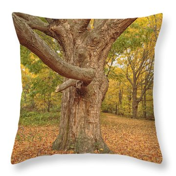 Odiorne Point State Park - Rye New Hampshire Throw Pillow