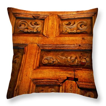 Old Door Throw Pillow by Perry Webster