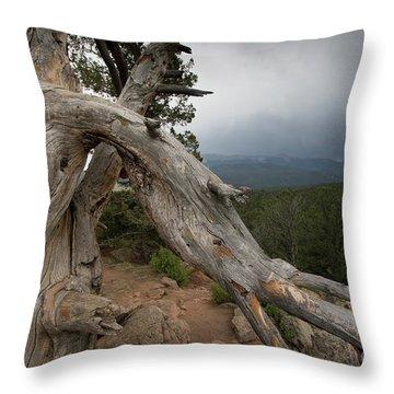 Old Tree On The Mountain Throw Pillow