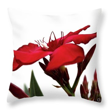 Oleander Blood-red Velvet 3 Throw Pillow