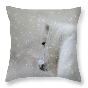 On A Cold Winter Day Throw Pillow