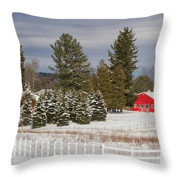 Throw Pillow featuring the photograph On A Mission by Heather Kenward