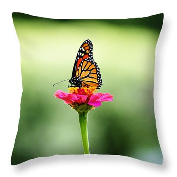 On My Own Throw Pillow