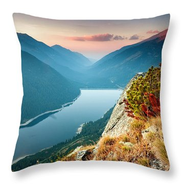 On The Edge Of The World Throw Pillow