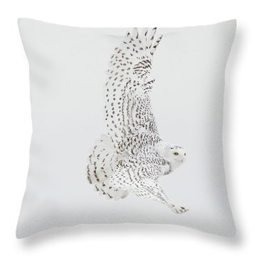 On The Move. Throw Pillow