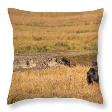 Throw Pillow featuring the photograph On The Move by Sandy Molinaro