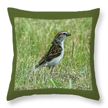 Throw Pillow featuring the photograph One Less Insect by Sally Sperry