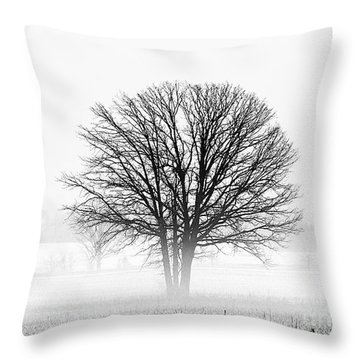 Throw Pillow featuring the photograph One... by Nina Stavlund