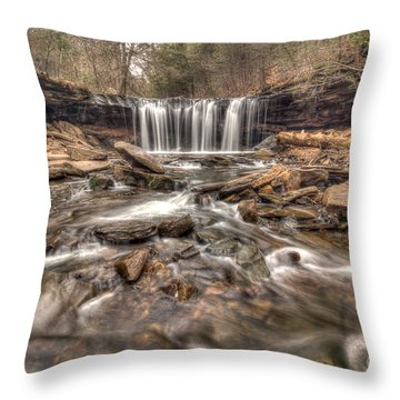 Oneida Falls II Throw Pillow