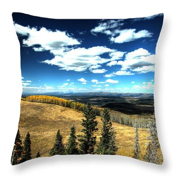 Onward They March Throw Pillow