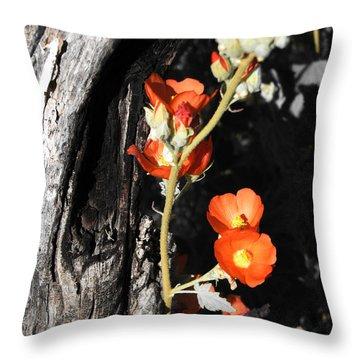 Orange Beauty Throw Pillow